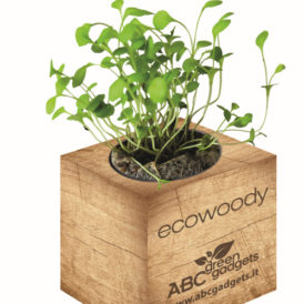 Cubo in legno magnetico con semi personalizzabile