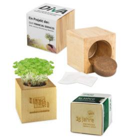 Cubo ecologico con semi personalizzabile