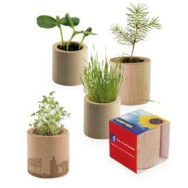 Eco vasetto in legno con semi personalizzabile