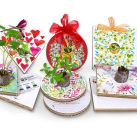 Eco-Decors decorazioni ecologiche con semi personalizzabile
