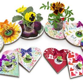 Eco-Decors decorazioni ecologiche con semi personalizzabili