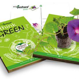 Eco-Postcard cartolina ecologica personalizzabile
