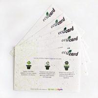 eco-card carta semi abc gadgets web