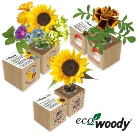 Eco-woody cubo in legno con semi personalizzato con stampa a colori