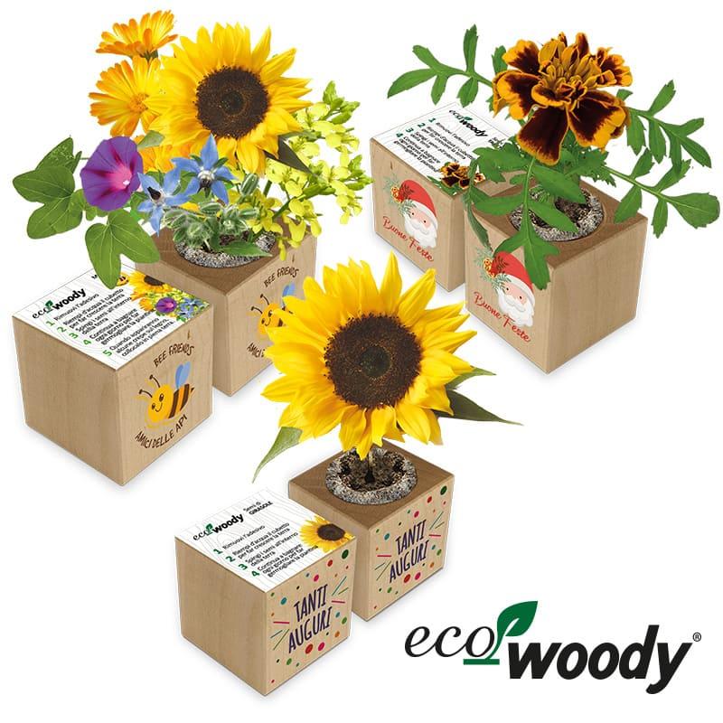 Eco-Woody cubo ecologico fiera Sana 2021